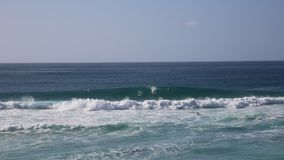 Surfers and waves stock footage