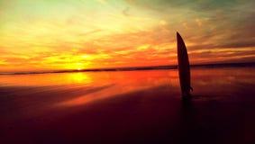 Surfersparadijs Royalty-vrije Stock Foto's