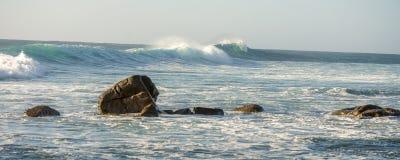 Surfez les roches et les vagues photos libres de droits