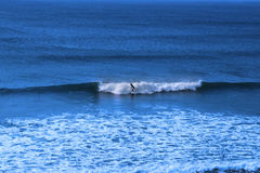 Surfing the blue atlantic ocean Royalty Free Stock Photography