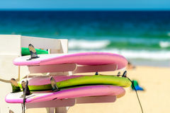 Surfing boards in a row. Surfing boards placed on the rack in a row at  Manly Beach, Australia Royalty Free Stock Photography