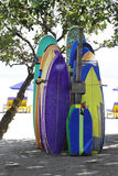 Surfing boards Stock Images