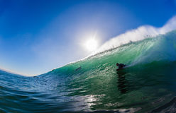 Surfing Body Boarder Wave royalty free stock images