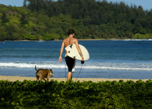 Surfing Buddies. Young man and his dog walk toward the ocean.  The man is wearing black shorts and carries a white surfboard.  Both have their back to camera Stock Photo