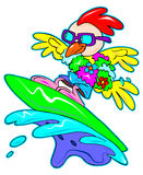 Surfing chicken Royalty Free Stock Photography