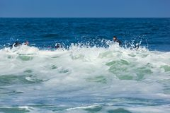 Surfing in Deal New Jersey Royalty Free Stock Photo