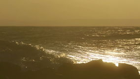 Surfing at the dusk Royalty Free Stock Photography