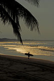 Surfing in early morning Royalty Free Stock Photography