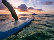 Surfing with friends royalty free stock photos