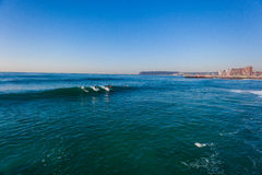 Surfing Gentle Waves Durban Royalty Free Stock Images