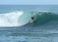 Surfing in Hawaii Stock Photos
