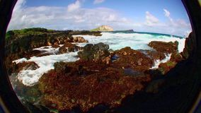 Surfing Hawaii - Waves on Rocks Fish Eye Lens. Xcorps TV Surfing Hawaii - Waves on Rocks Fish Eye Lens stock video