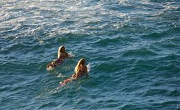 Surfing at Ho'okipa Royalty Free Stock Images