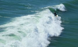 Surfing at Huntington Beach. High wave and beautiful ocean in green color Stock Image