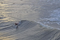 Surfing Hurricane Sandy Waves at Folly Beach, SC Stock Photography