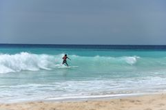 Surfing in the Indian ocean royalty free stock images