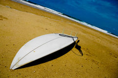 Surfing Life Royalty Free Stock Photo