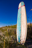 Surfing longboard. Close up of surfers longboard on beach sand dunes under blue sky Stock Images