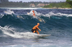 Surfing on Maldives royalty free stock photo