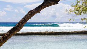 Surfing in the maldives. Wave breaking. royalty free stock photography