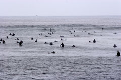 Surfing Malibu. Surfers waiting for waves Stock Image