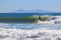 Surfing man in the sea. Surfing man, Papamoa beach, New Zealand Stock Image