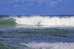 Surfing Waves Hawaii Stock Photo
