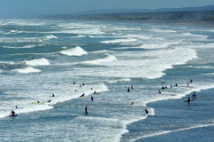Surfing in Muriwai beach - New Zealand. MURIWAI, NZL - JAN 01 2015:Visitors surf in Muriwai beach.It's a very popular beach in New Zealand known for it beauty royalty free stock image
