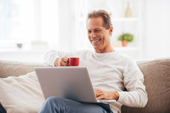 Surfing net at home. Stock Photography