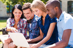 Surfing the net together. Royalty Free Stock Photo