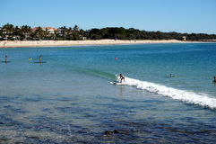 Surfing in Noosa Royalty Free Stock Photos