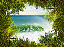 Surfing Paradise Stock Photo