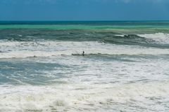 Surfing in Rough Waters royalty free stock photography