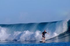 Surfing Samoa. A surfer catching a nice barrel in Samoa Royalty Free Stock Images