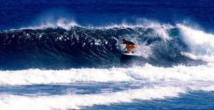 Surfing Samoa. A surfer catching a wave in Samoa Royalty Free Stock Photo