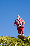 Surfing Santa. A Santa Claus mannequin riding a surfboard above palm trees; Christmas in California royalty free stock photography