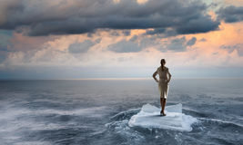 Surfing sea on ice floe Royalty Free Stock Photography