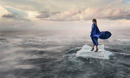 Surfing sea on ice floe Stock Photography