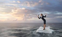 Surfing sea on ice floe Stock Photos