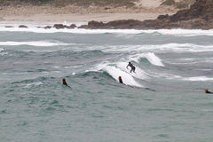 Surfing at Sennen Cove Cornwall Stock Photo