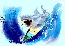 Surfing shark Stock Images