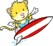 Surfing Summer Cheetah Leopard Stock Photos