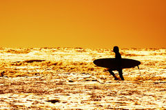 Surfing and sunset Royalty Free Stock Photos
