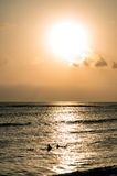 Surfing at Sunset. Backlight Silhouette Surfer in the Ocean at Sunset Stock Photo