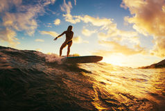 Surfing at Sunset. Beautiful Young Woman Riding Wave at Sunset. Outdoor Active Lifestyle Royalty Free Stock Photography