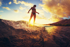 Surfing at Sunset Stock Image