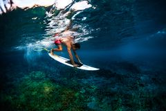 Surfing stock images