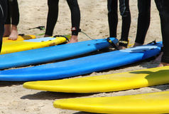 Surfing team on the beach. With vivid surfing boards Stock Photo
