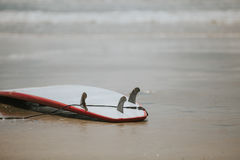 Surfing Themed Photo. Superb Quality Surfing Themed Photo Royalty Free Stock Photos