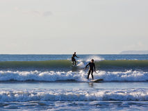 Surfing in Unison Royalty Free Stock Photography